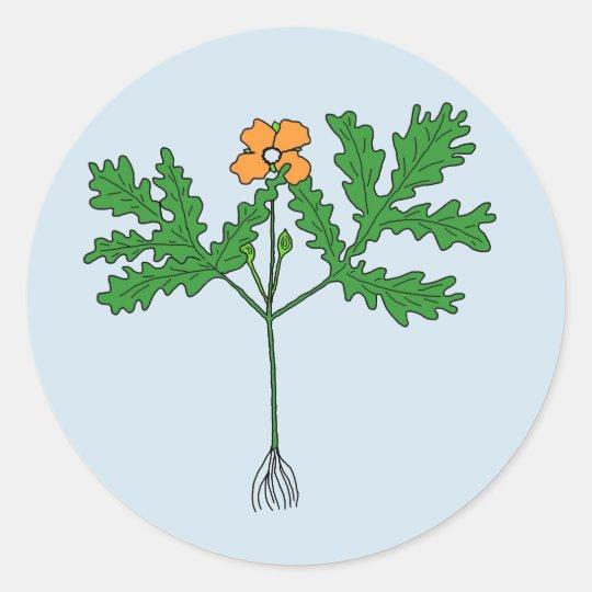 Poppy Plant Sticker