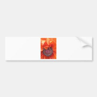 Poppy Seed Bumper Sticker