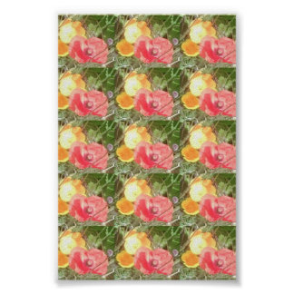 Poppy & Yellow Flower Value Poster - Very Small