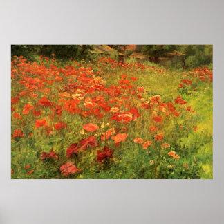 Poppyland Poster