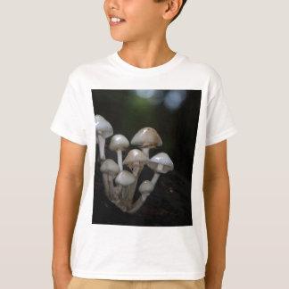 Porcelain fungus, Oudemansiella mucida T-Shirt
