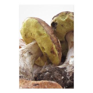 Porcini mushrooms isolated on white background customised stationery
