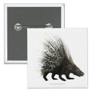 Porcupine 15 Cm Square Badge