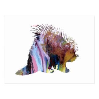 Porcupine Art Postcard