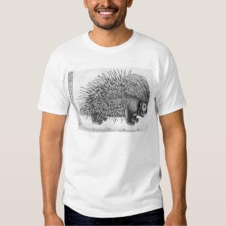 Porcupine, from 'Historia Animalium' T Shirts
