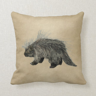 Porcupine On Old Paper Cushion