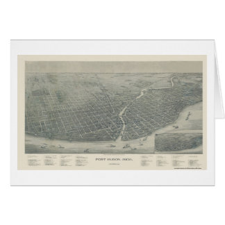 Port Huron, MI Panoramic Map - 1894 Card