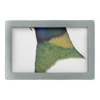 port lincoln parrot, tony fernandes rectangular belt buckles