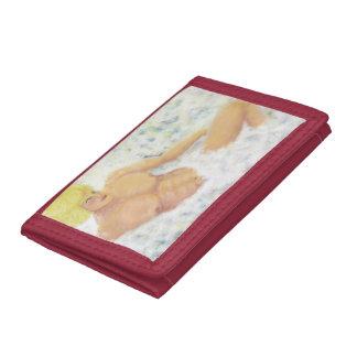 portfolio tri-fold wallets