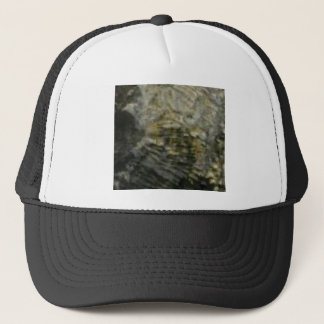 portion of the rock in stone trucker hat
