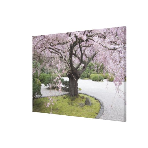 Portland Japanese Gardern, Portland, Oregon, Stretched Canvas Prints