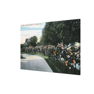 Portland, OregonView of a Rose Garden Stretched Canvas Prints