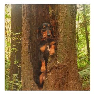 Portland Tree Acrylic Print