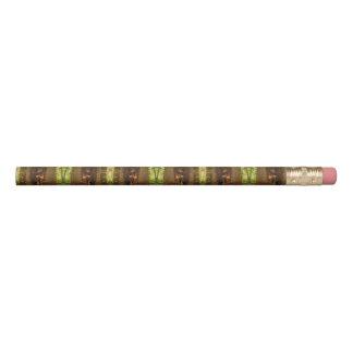 Portland Tree Pencil