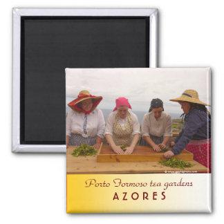 Porto Formoso tea gardens Square Magnet
