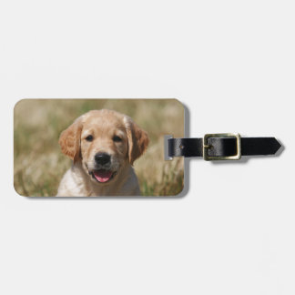 Portrait golden retriever puppy Puppy Luggage Tag
