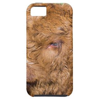 Portrait head newborn scottish highlander calf case for the iPhone 5