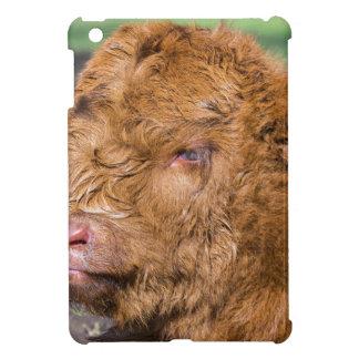 Portrait head newborn scottish highlander calf cover for the iPad mini