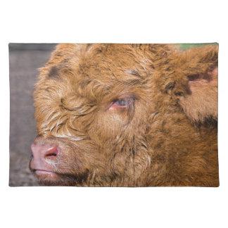Portrait head newborn scottish highlander calf placemat