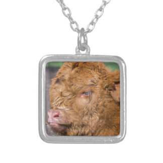 Portrait head newborn scottish highlander calf silver plated necklace