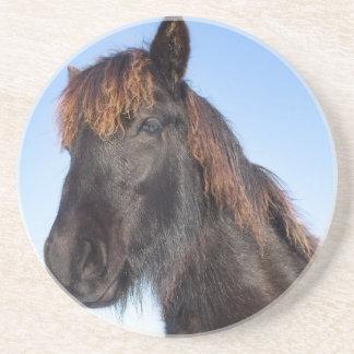 Portrait head of black Frisian horse Beverage Coasters