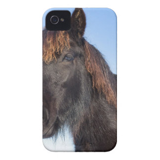 Portrait head of black Frisian horse Case-Mate iPhone 4 Cases