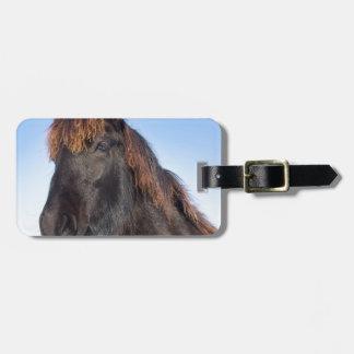 Portrait head of black Frisian horse Luggage Tag