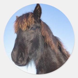 Portrait head of black Frisian horse Round Sticker