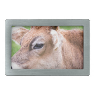 Portrait head of horned brown cow belt buckle
