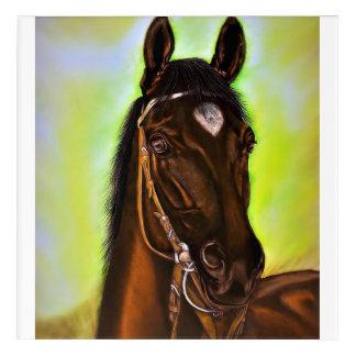 Portrait horse acrylic print
