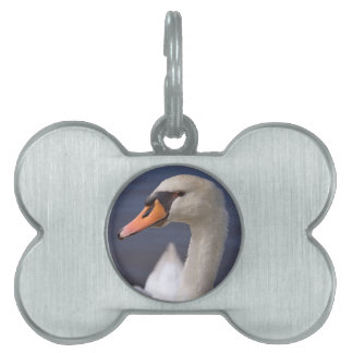 Portrait mute swan pet name tag