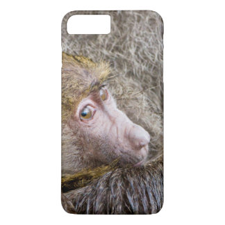 Portrait Of A Baby Olive Baboon (Papio Anubis) iPhone 7 Plus Case