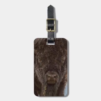 Portrait Of A Bison Bull In The Rain Luggage Tag