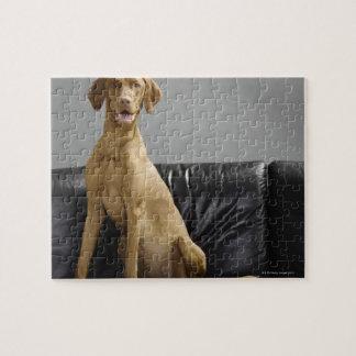 Portrait of a dog jigsaw puzzle