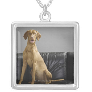 Portrait of a dog silver plated necklace