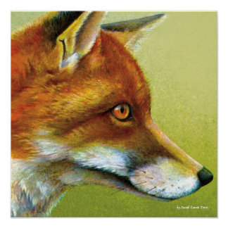 Portrait of a fox fine art poster print