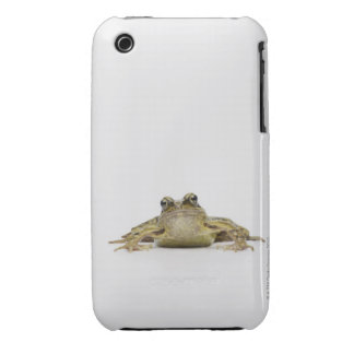 Portrait of a frog in a white studio iPhone 3 covers