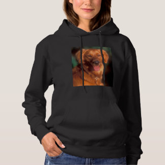 Portrait of a golden retriever hoodie