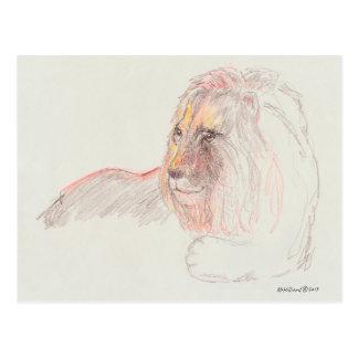 Portrait of a Lion at Rest on 5.6 x 4.25 postcard