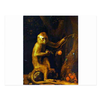 Portrait of a Monkey by George Stubbs Postcard
