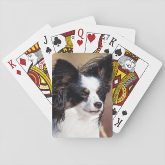Portrait Of A Papillon Sitting In The Wind Poker Deck
