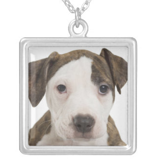 Portrait of a pitbull puppy silver plated necklace