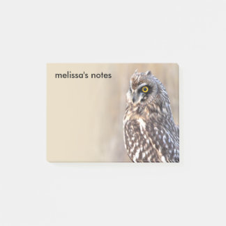 Portrait of a Short-Eared Owl Post-it Notes