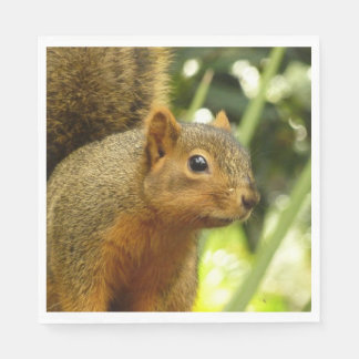 Portrait of a Squirrel Nature Animal Photography Disposable Serviettes