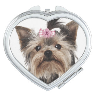 Portrait of a Yorkshire Terrier dog Mirror For Makeup