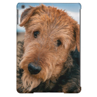 Portrait of an Airedale Terrier 2 iPad Air Case