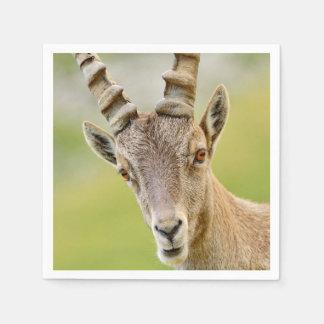 Portrait of an ibex disposable serviette