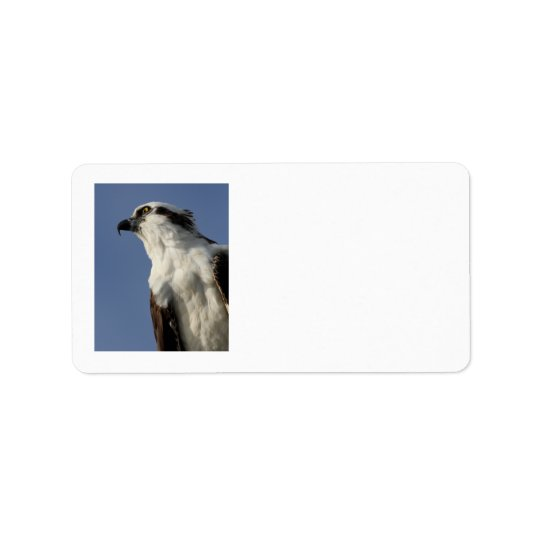 Portrait of an osprey label
