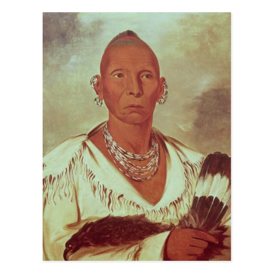 Portrait of Black Hawk, Indian Chief Postcard