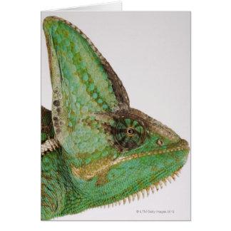 Portrait of boldly colored Yemen chameleon Card